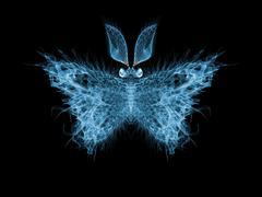Butterfly Elegance - stock illustration