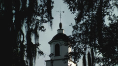 Historic church steeple spanish moss bird Stock Footage