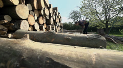 Putting logs on pile Stock Footage