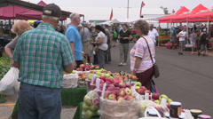 Tourists at historic farmers market in St Jacobs Stock Footage
