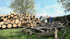 Wide shot with logs on floor and cutted on pile for storage Stock Footage