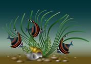 Stock Illustration of Exotic aquarium  fish with shells and plant.