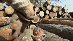 Close up putting on protective gloves on pile of logs Stock Footage