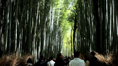 Japanese bamboo Rainforest people nature travel Arashiyama Kyoto Stock Footage