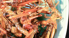 Crispy fried insects Stock Footage