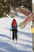 Person skiing, Vasterbotten, Lapland, Sweden Stock Photos