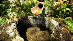 Koch Sanso Japanese garden water spring Kyoto travel Japan Asia Stock Footage