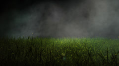 Grass Background + Alpha Channel Stock Footage