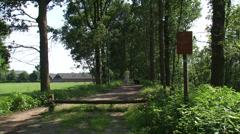 Dog walker across dike under row of trees, Dutch Grebbe Line (Grebbelinie) Stock Footage