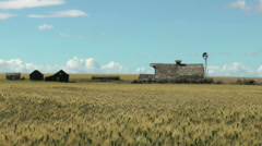 Wheat, old homestead and windmill - stock footage