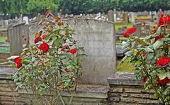 Old cemetery war memorial Kuvituskuvat
