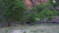 Zions National Park tourists hiking HD Stock Footage