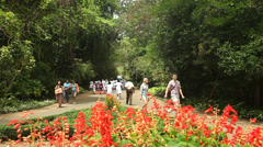 People in botanical gardens, Kandy, which attracts 2 million visitors annually. Stock Footage