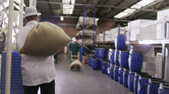 Workers in a coffee processing factory carrying sacks of coffee Stock Footage
