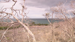 Shots of the seashore, and a small bay in the Galápagos Stock Footage