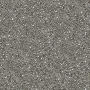 Concrete Surface with Shellsb- Seamless Texture. Stock Photos