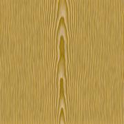 Oak Woodgrain - stock illustration