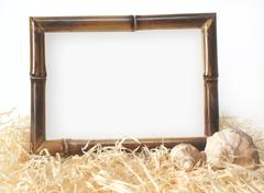 Frame from a bamboo and two shells - stock illustration