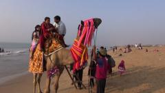 Indian people family riding on camel in Puri beach, Odisha, India Stock Footage