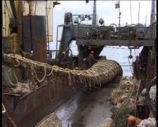 Fishing vessel in the fishery, fishermen pulling trawl - 01 Stock Footage