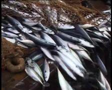 Fishing vessel in the fishery, fishermen pulling trawl - 05 Stock Footage