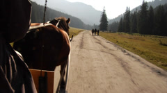 A horse carriage ride through Koscieliska Valley, in the Tatra mountains, Poland Stock Footage