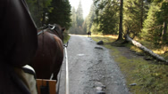 Stock Video Footage of A horse carriage ride through Koscieliska Valley, in the Tatra mountains, Poland