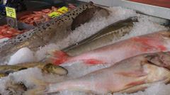 North Europe Norway City of Bergen 026 slow pan over fresh fish on ice Stock Footage