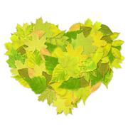 Stock Illustration of Heart from green leaves
