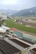 Horse track. Stock Photos