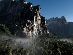 Visual Effects Elements Jungle Dreamland - stock footage