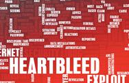 Stock Illustration of heartbleed exploit