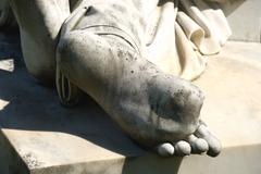 Foot toe Stock Photos