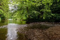 calm water - stock photo