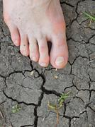 Tired male  feet on dry cracked clay. Dry cracked clay in background. Stock Photos