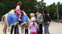 Children Ride Camel, Horse at City Square. Time Lapse Stock Footage