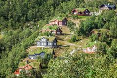 Stock Photo of typical norwegian house with grass on the roof