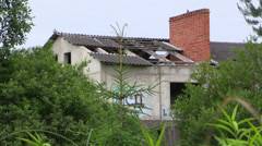 Abandoned house with birds on failed roof in forest Stock Footage