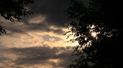 Dark sun shines through the clouds on a background of tree Stock Footage