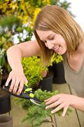 Gardening - woman trimming bonsai tree - stock photo
