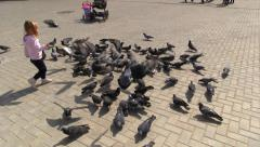 Girl run and scare flock of doves and they fly in different directions - stock footage