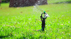 Water jet sprinkling green grass close-up Stock Footage