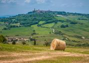 Stock Photo of typical tuscan landscape