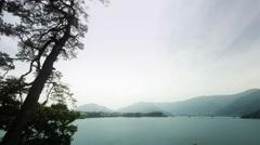 Lake Kawaguchi side pine tree, color grade Full HD (1920x1080) Stock Footage