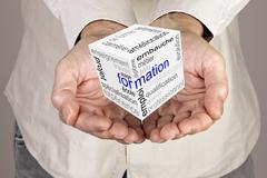 Formation communication world cube Stock Illustration