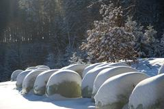 Silage bags in the snow Stock Photos