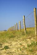 Wood picket barrier in french dunes - stock photo
