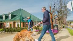 Couple Walking Dogs on Main Street in Historic Hendersonville, NC Stock Footage