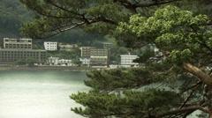 Lake Kawaguchi side pine tree 02, color grade 4K (3840x2160) Stock Footage