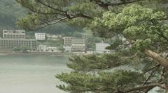 Lake Kawaguchi side pine tree 02, non color grade 4K (3840x2160) - stock footage